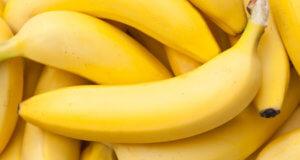 banane alimentazione salutare cane gatto