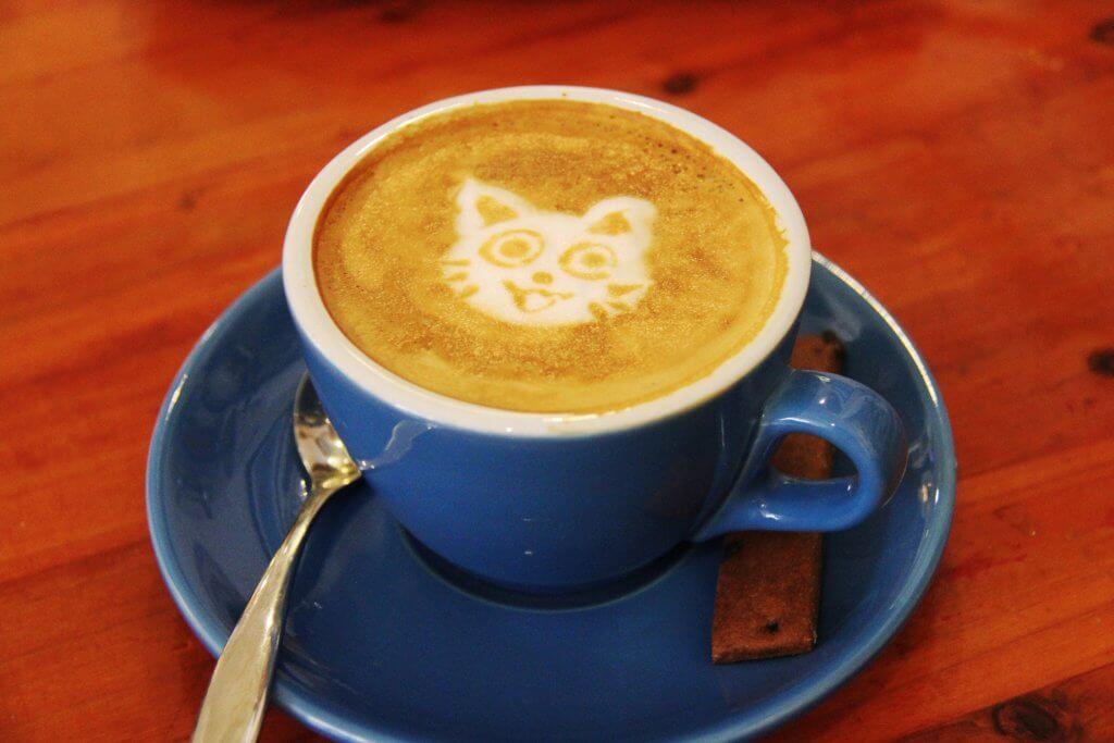 effetti caffeina su animali
