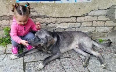 Bambini e cani, 9 consigli per un sano rapporto