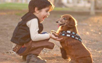 Come addestrare il cane a interagire con i bambini