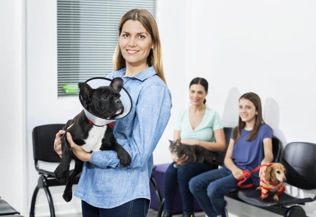 business e marketing per ambulatori veterinari