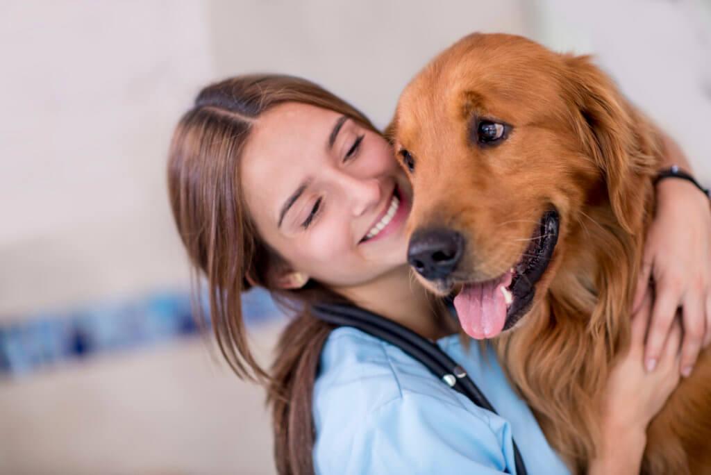 marketing medico veterinario