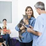 pubblicita per ambulatori veterinari